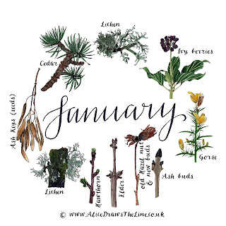 January by Alice Draws The Line