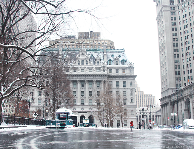 NYC Winter, City Hall New York, Blizzard of 2015