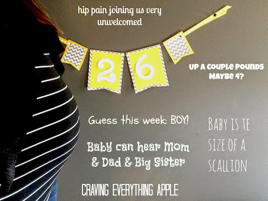 26 Weeks: Scallion & my toddler making fun of how I walk at 6 months pregnant