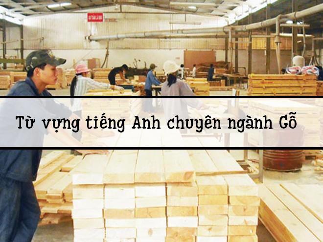 Từ vựng tiếng anh về chuyên ngành gỗ