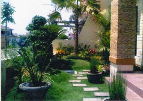 Taman rumah minimalis di depan rumah