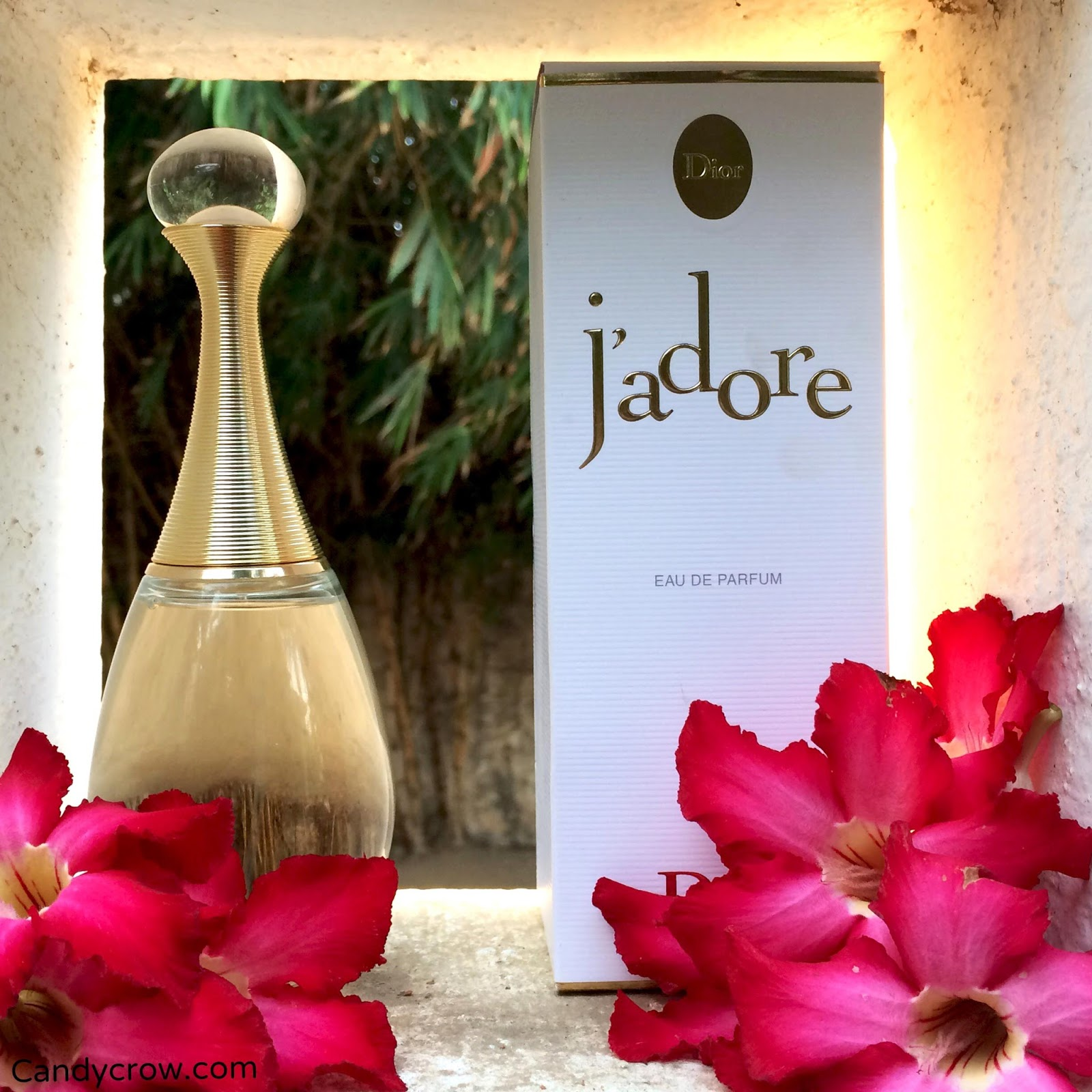 Dior Jadore Perfume Review Candy Crow Top Indian Beauty And Christian Women Edp 100ml