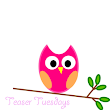 Owlnestly Book Reviews: Teaser Tuesdays