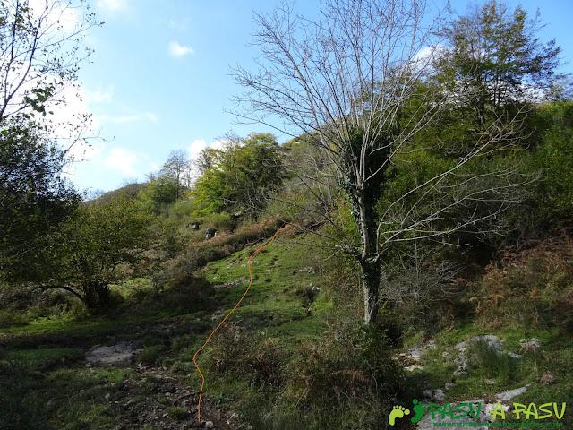 Peña Sienra desde Covadonga: Desvío en la Vega de Orandi para subir a la Peña Sienra