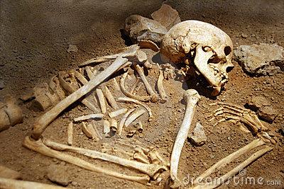 world's oldest human bone
