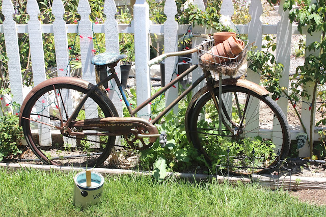 This Is What The Antique Bicycle Looked Like Before I Painted It In Our  Garden.