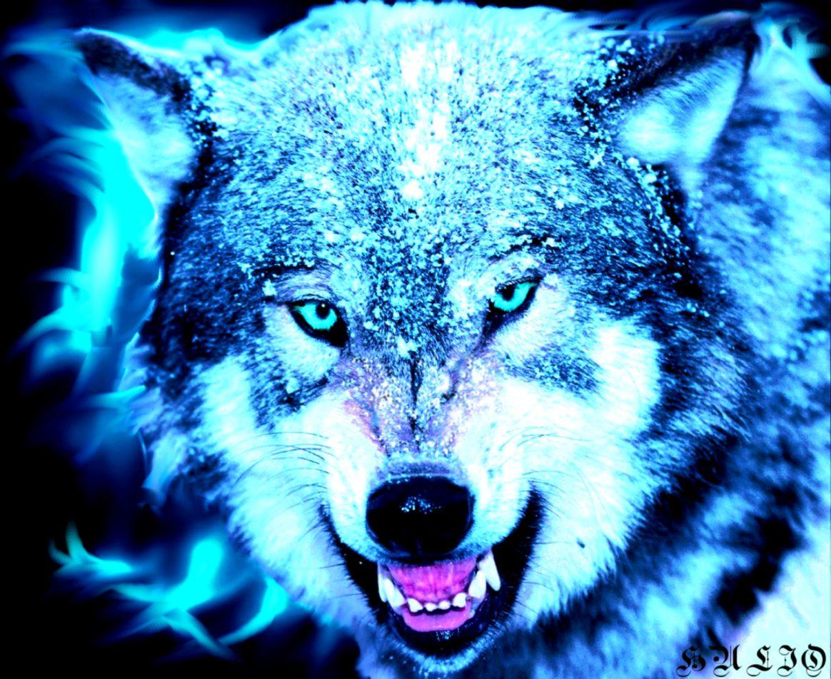 wallpaper of wolves