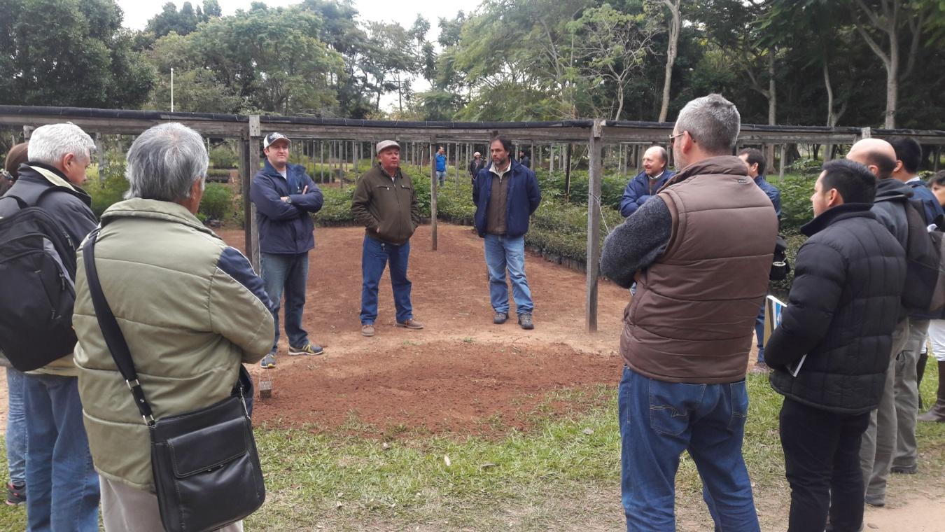Nea misiones forestal visita a vivero en ayolas paraguay for Viveros en paraguay
