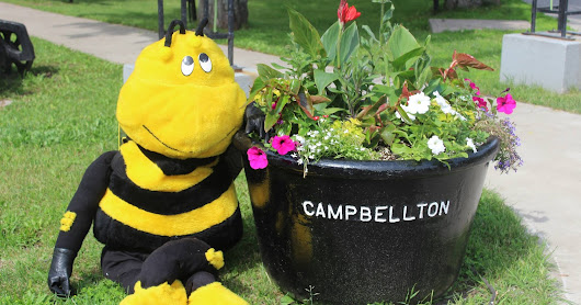 Bee City Campbellton Mascot