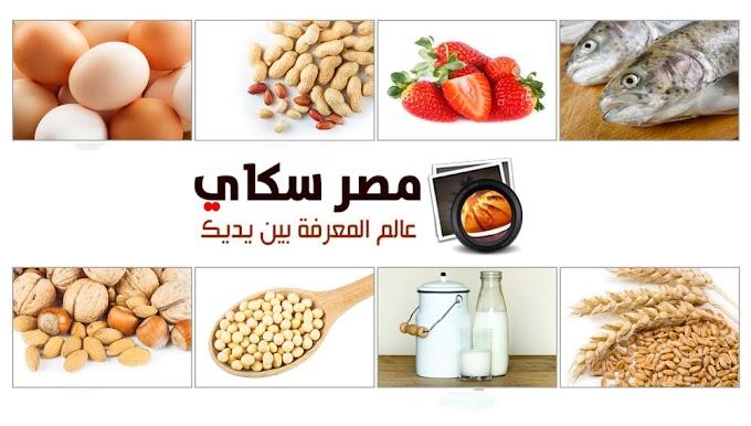 8 وجبات غذائية يحتاجها الطفل يومياً لنمو سليم وصحي meal
