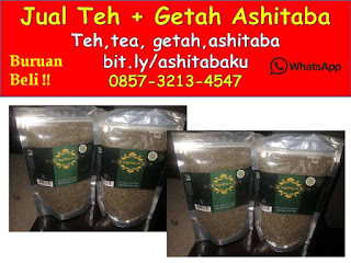 jual getah Ashitaba Cimahi, jual teh ashitaba cimahi