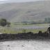 Επίθεση του PKK σε τουρκική στρατιωτική βάση – 35 νεκροί