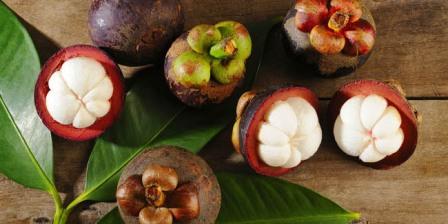 Manfaat Buah dan Kulit Manggis Untuk Menjaga Kesehatan