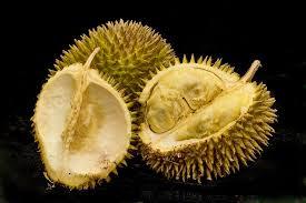 Manfaat Buah Durian yang semanis buahnya