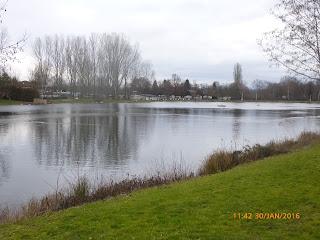 Breisgau Campingplatz am Silbersee in Freiburg