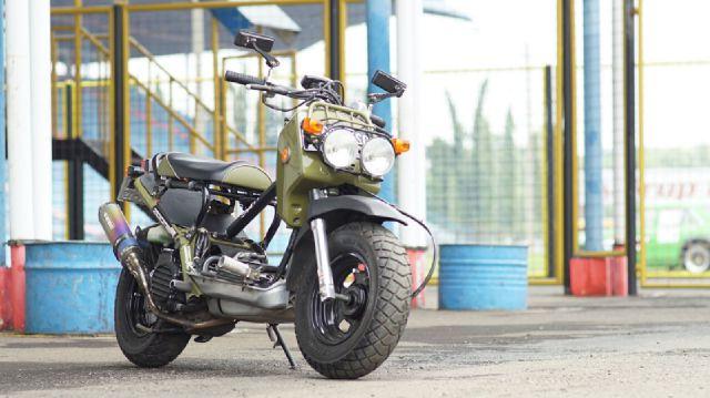 HONDA ZOOMER JAKARTA: Honda Zoomer Fi Stock Engine