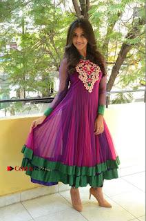 Actress Pooja Jhaveri Latest Stills in Purple Salwar Kameezt at Dwaraka Success Meet  0255.JPG