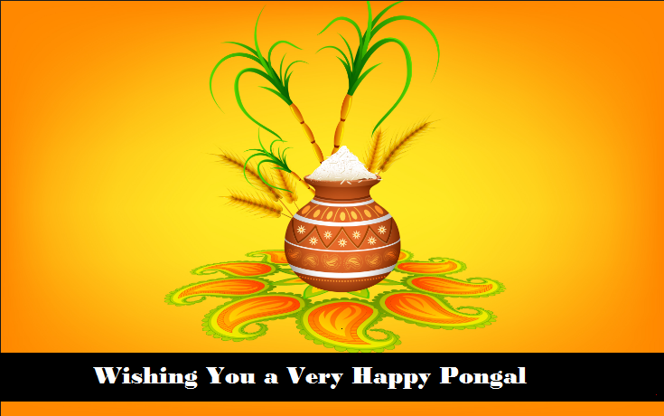 HD*} Happy Pongal Images 2017