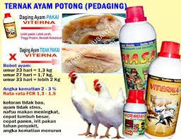 jual vitamin viterna di kendal