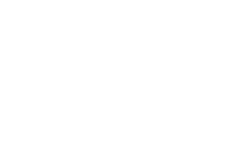 Wild Frog Photography