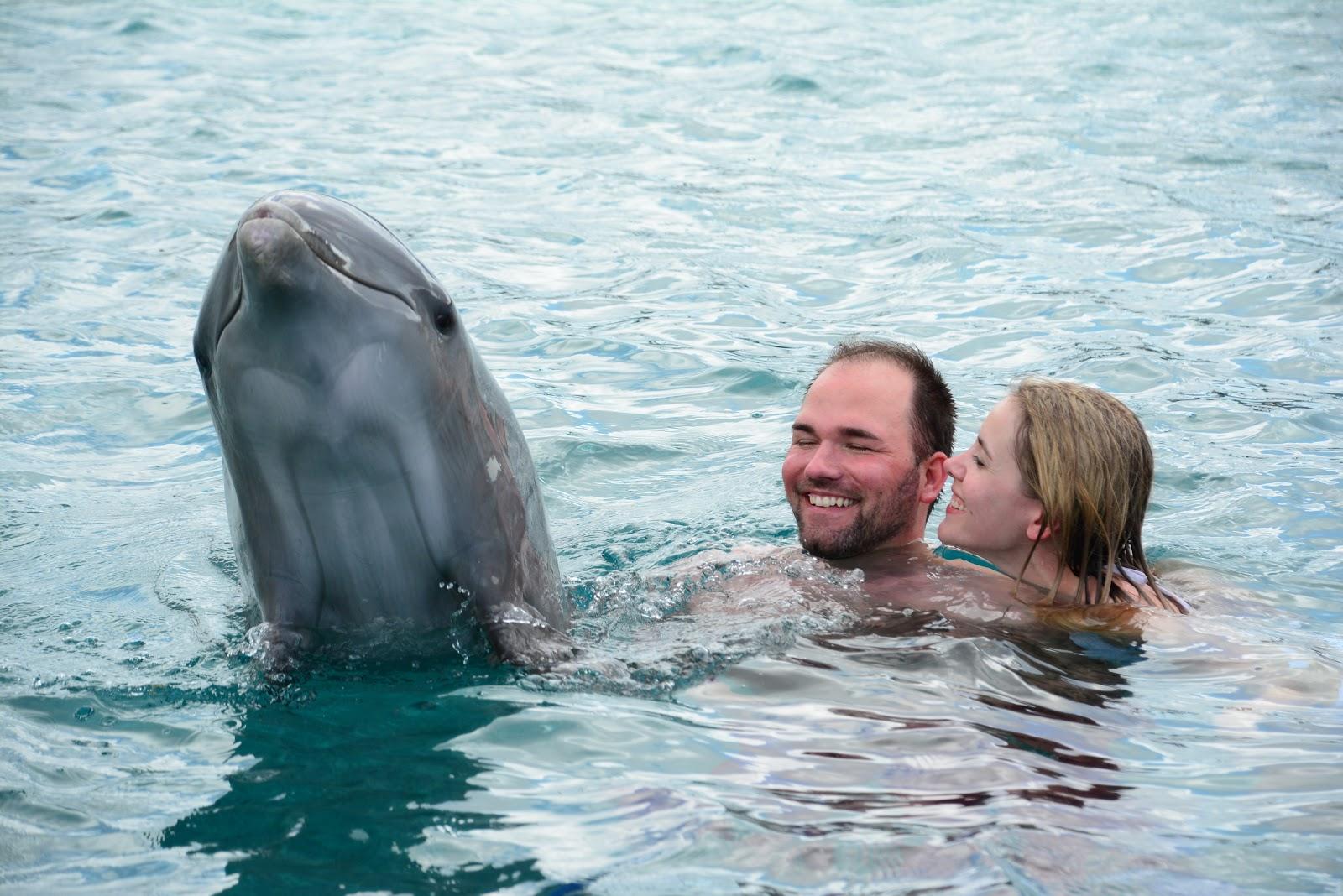 nadar-com-golfinhos