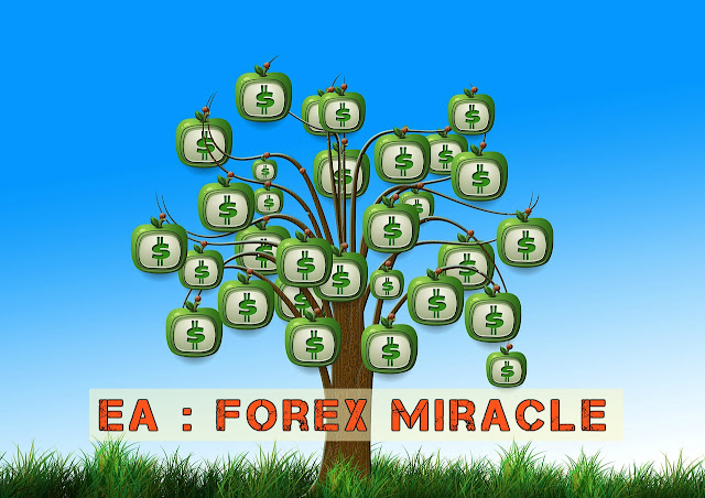 Forex Miracle