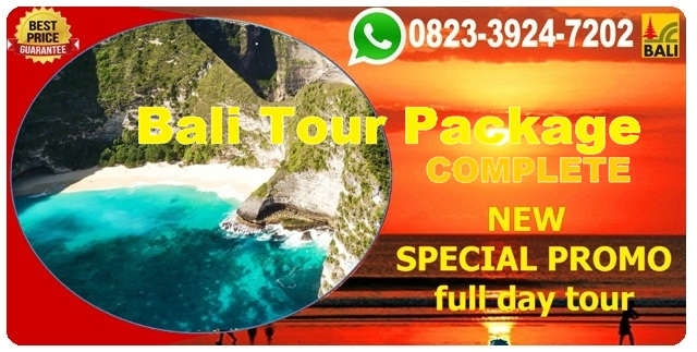 BALI LOCAL TOUR OPERATORS