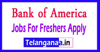Bank of America Recruitment 2017 Jobs For Freshers Apply