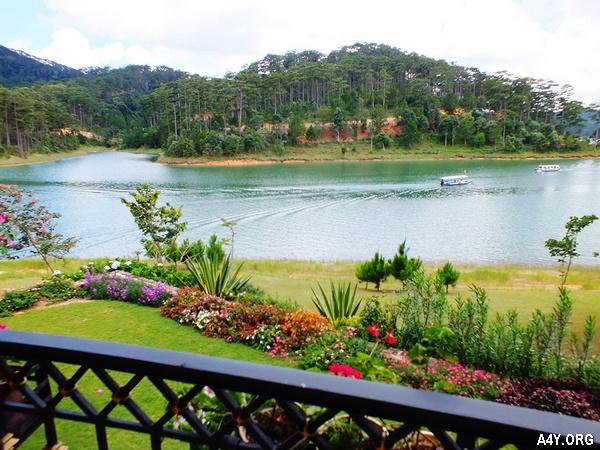cảnh hoa cỏ và hồ nước tuyệt đẹp ở Đà Lạt