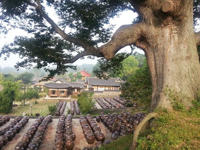 Doenjang pots in the beautiful Myeongjae mansion