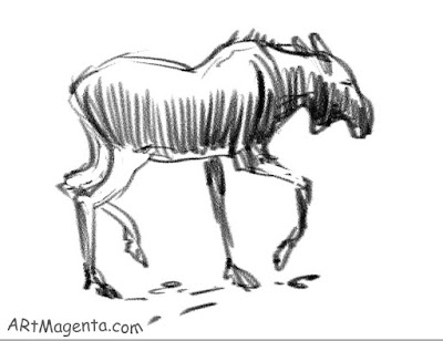 Moose is a sketch by artist and illustrator Artmagenta