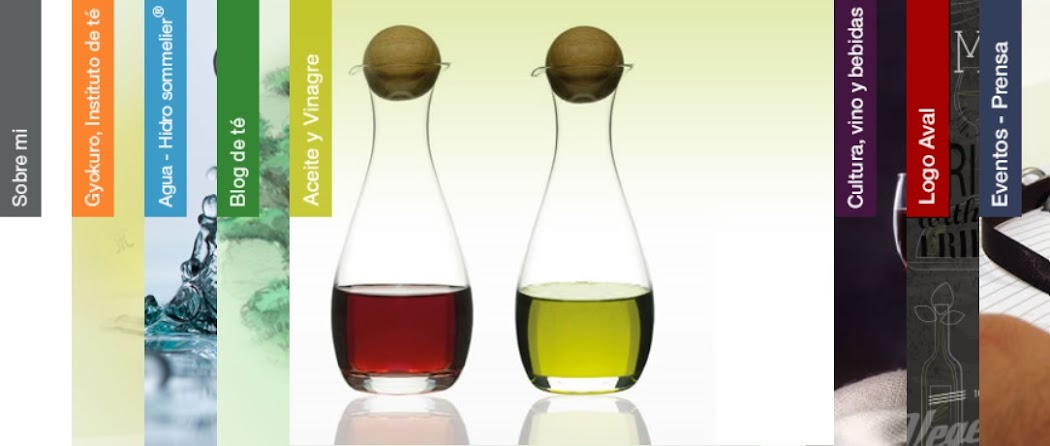 Aceite y Vinagre / Oil And Vinegar Blog