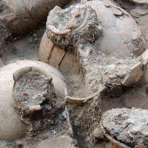 история винных погребов, устройство винного погреба