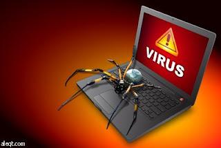 الفرق بين فيروسات الكمبيوتر وكيف تعمل !
