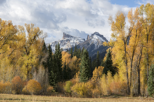 Fall Colors in the Cimarron Mountains of Southwestern Colorado with Precipice Peak