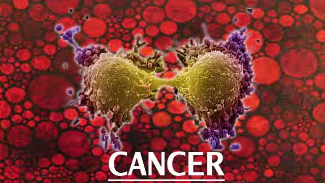 Proven Ways To Fight Cancer