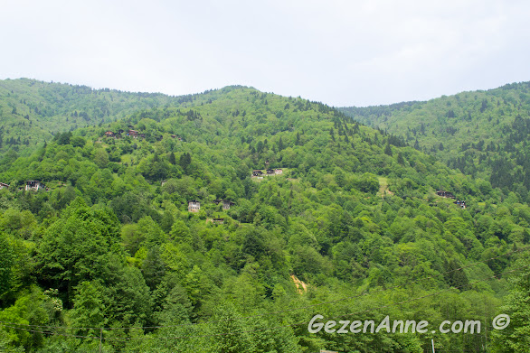 Trabzon ve Rize'nin tipik coğrafyası yüksek yeşil dağlar ve dağ tepesine kondurulmuş evler