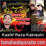 http://www.humaliwalayazadar.com/2015/10/shuja-rizvi-nohay-2016.html