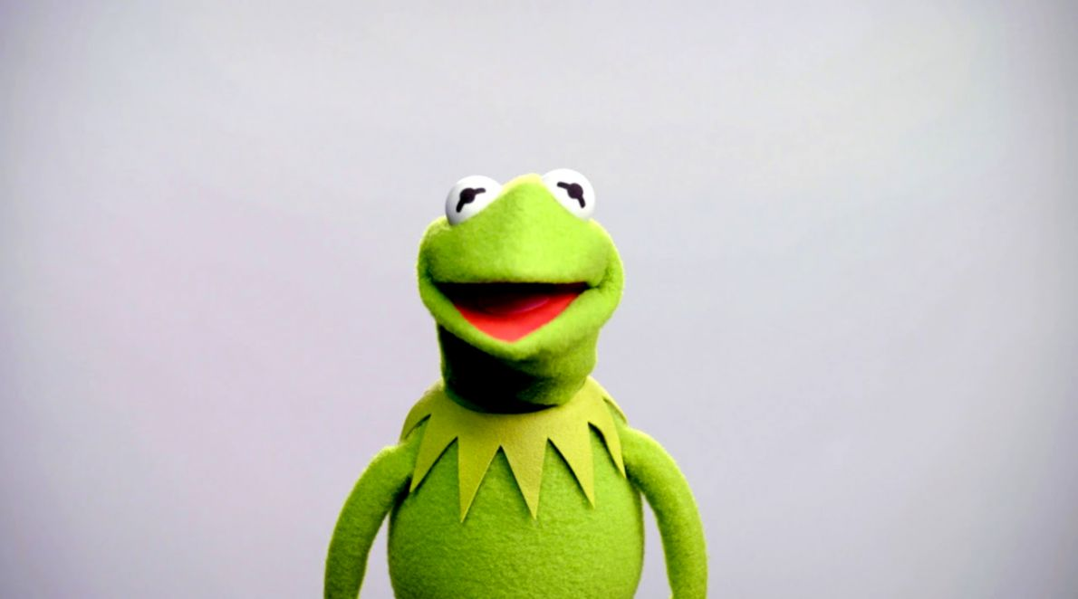 Muppets Kermit The Frog Wallpaper Wallpapers Snipe