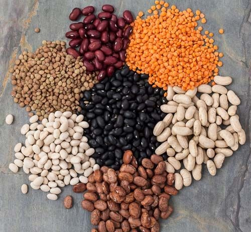 Legumes High Protein Rich Food