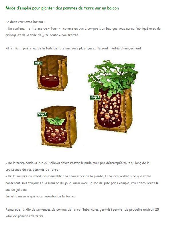 breuillet nature comment cultiver des pommes de terres sur un balcon. Black Bedroom Furniture Sets. Home Design Ideas