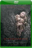 Hipersomnia (2016) DVDRip Latino