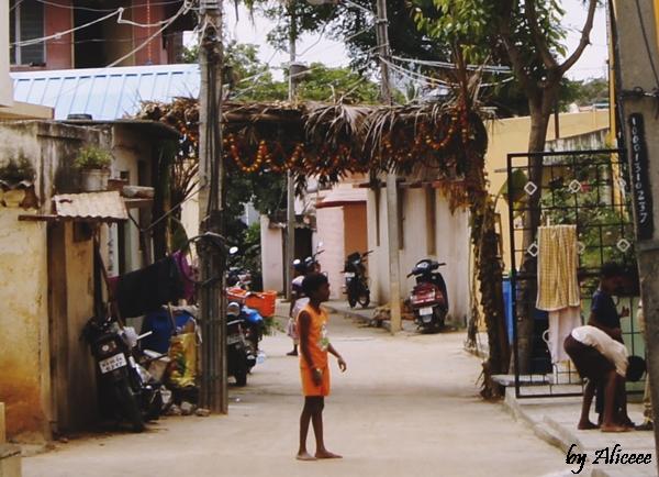 viata-in-India