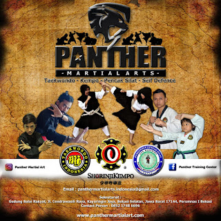 Panther Martial Arts Di Acara Launching Decathlon Bekasi