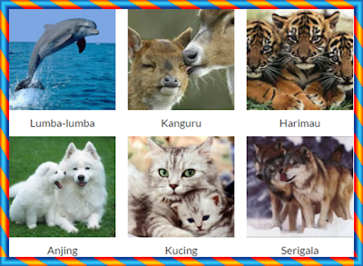 Daftar Nama Binatang Mamalia