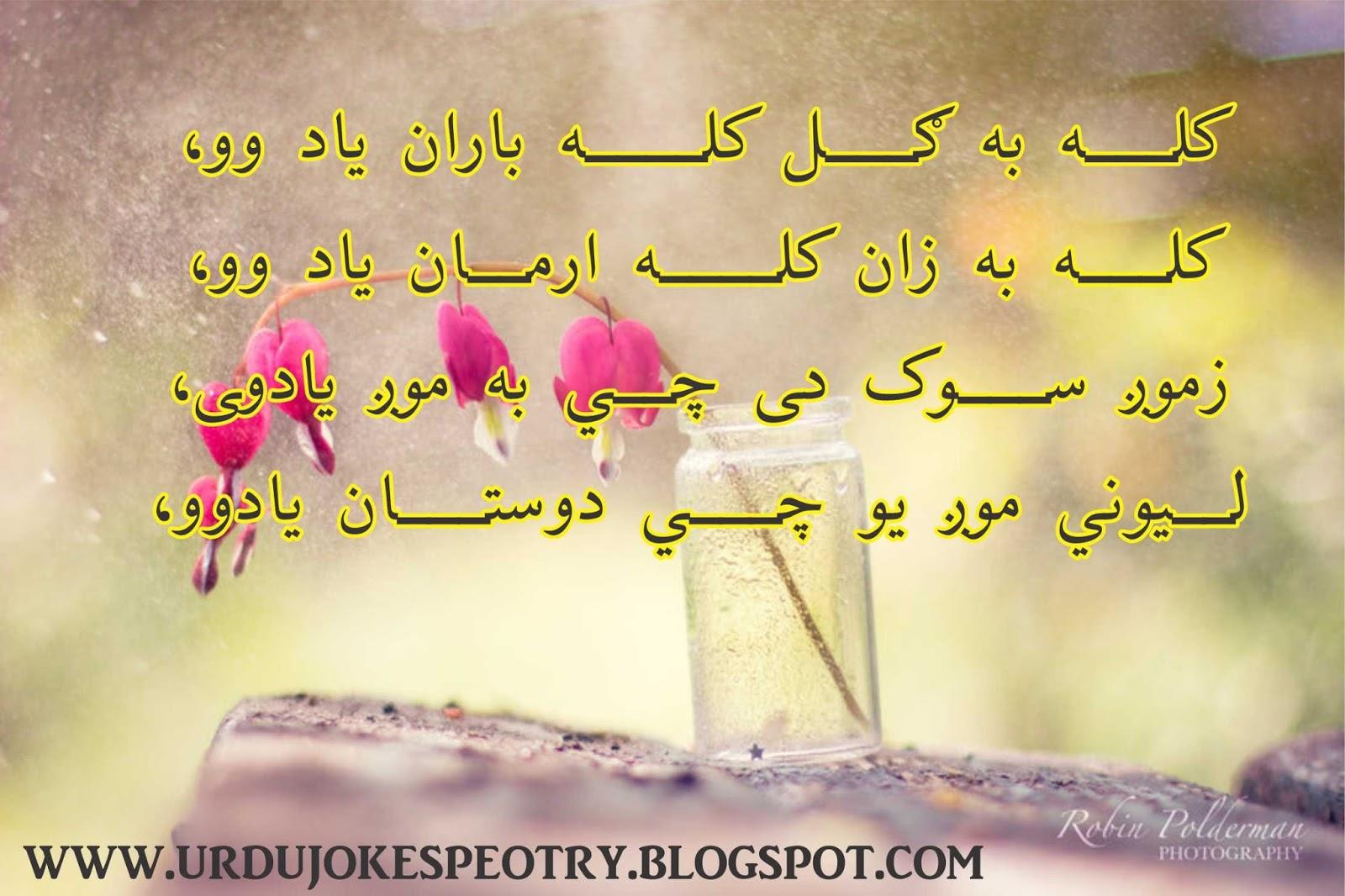 Pashto Poetry Shayari Love Romantic All