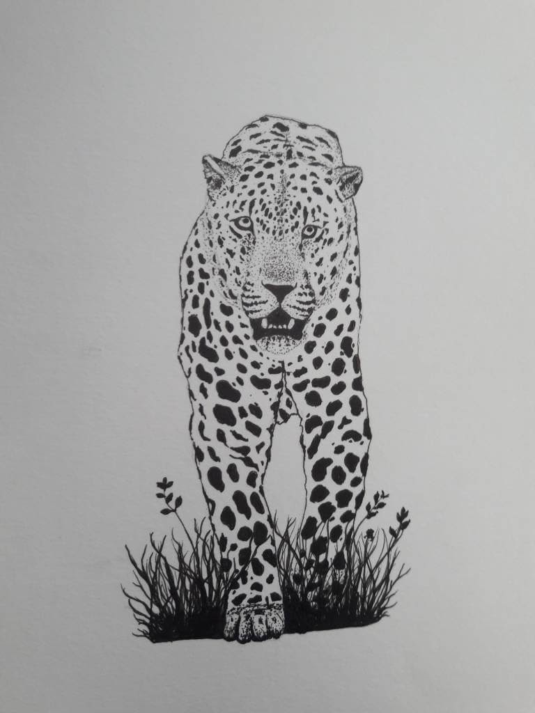 06-Jaguar-mARTin-Black-and-White-Stippling-Animal-Drawings-www-designstack-co