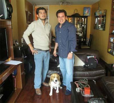 Nuestros Servicios - Vicdogs Perú