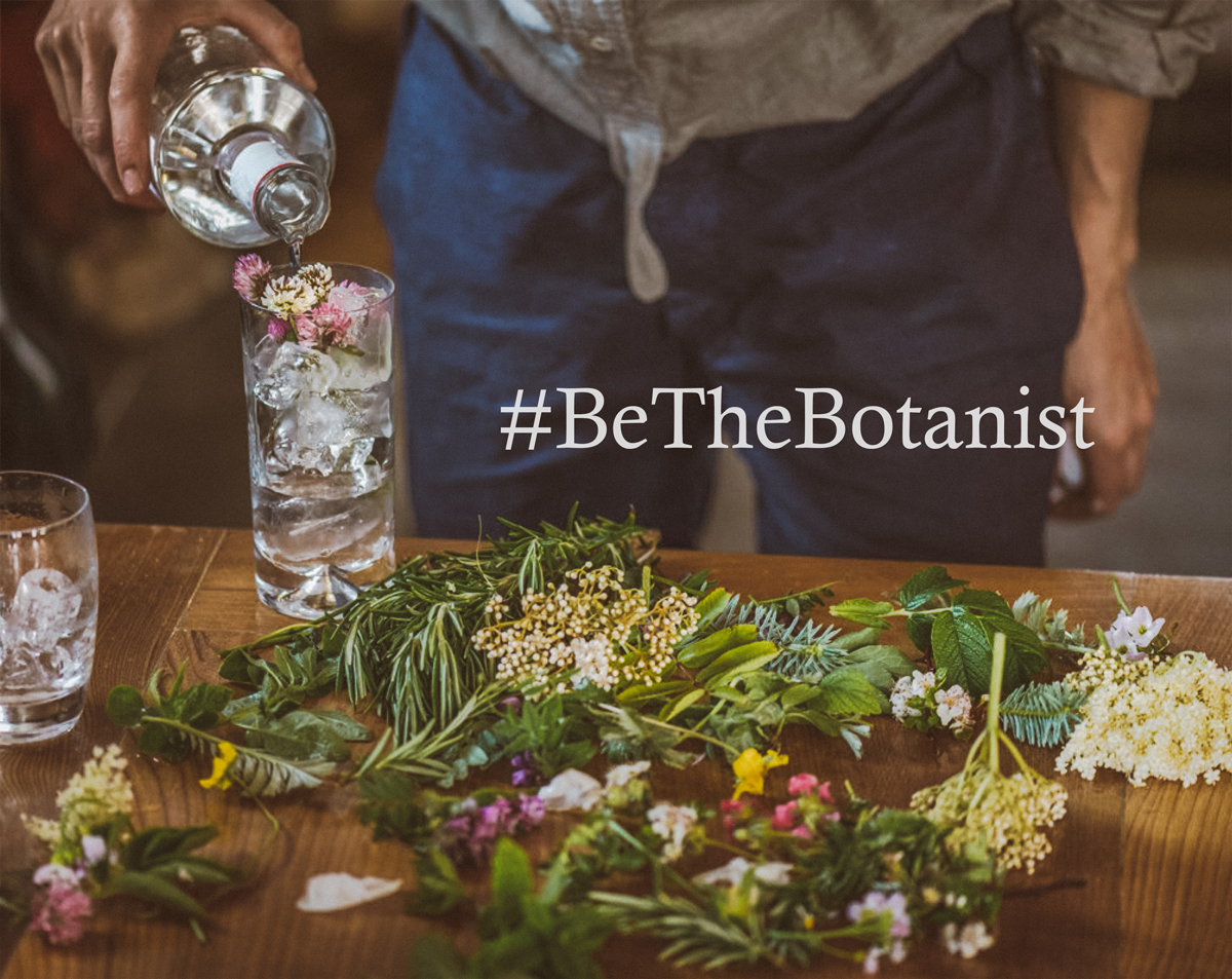 The Botanist Teaches Us Infinite Ways to Enjoy Gin #BeTheBotanist