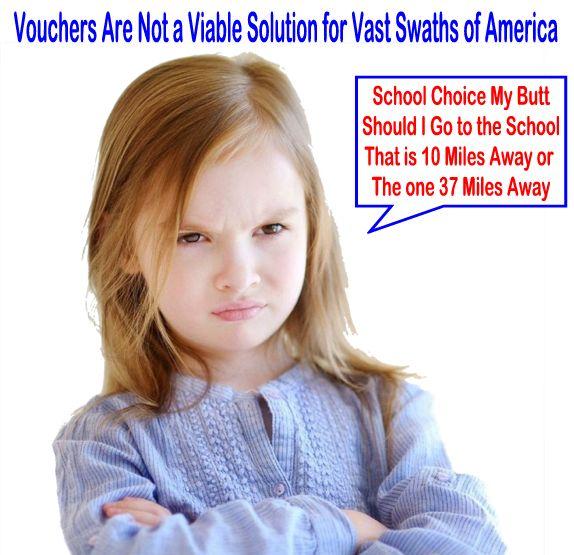 Image result for big education ape vouchers